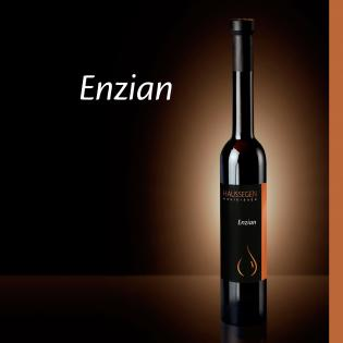 Haussegen Enzian Brand 42% vol. 0,35l